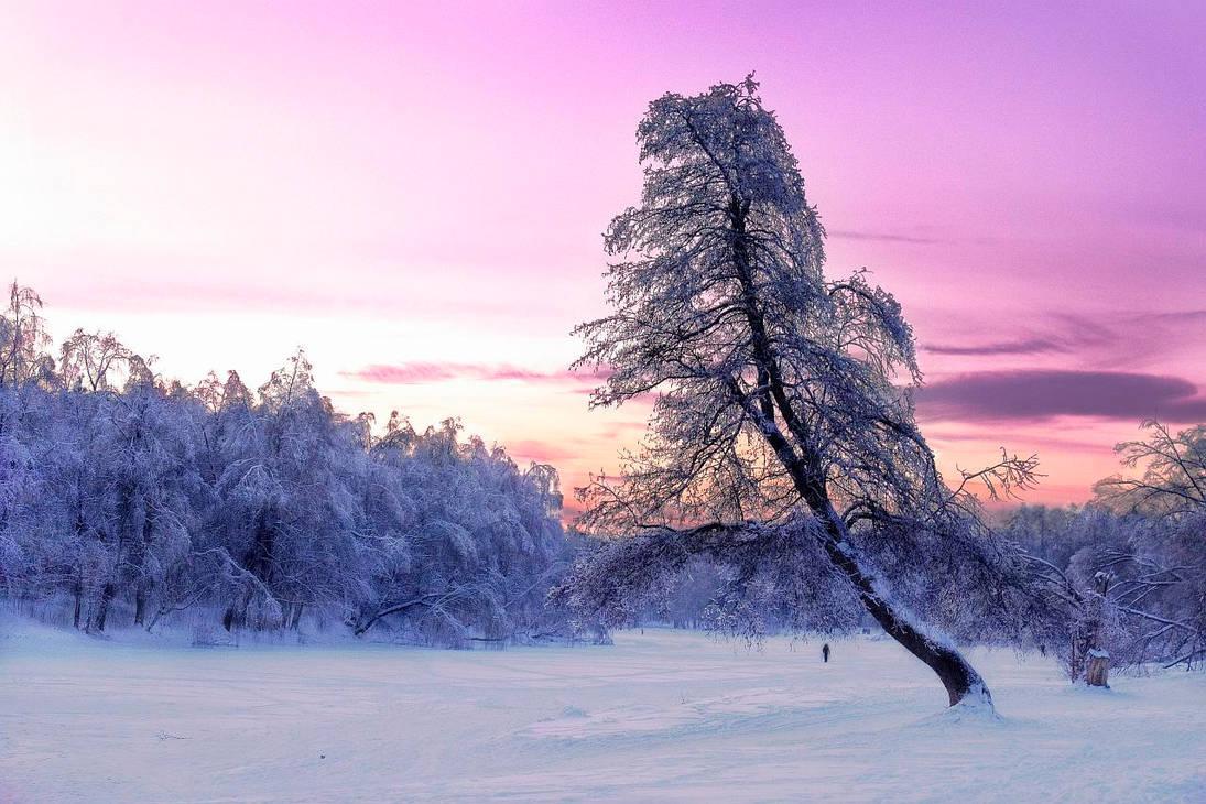 Winter fairy tales by Vint26