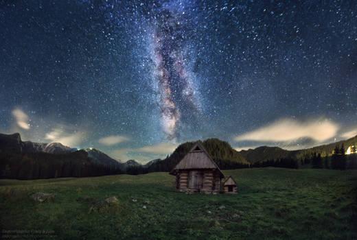 Wonderland of Stars