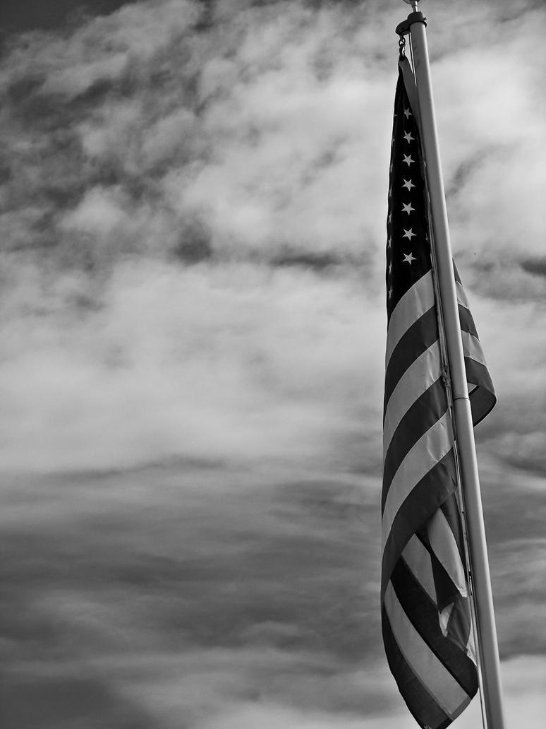 My flag by levoniust