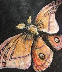 One little moth by shy-pet