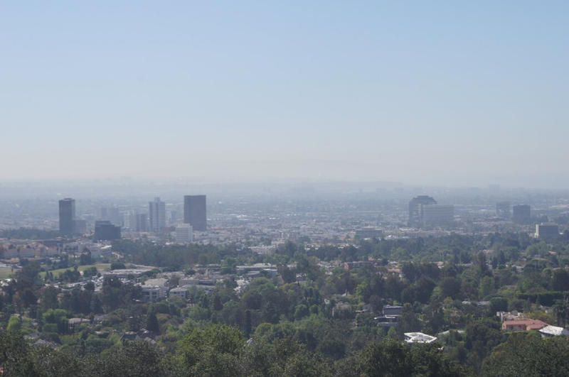In Los Angeles by Nullibicity
