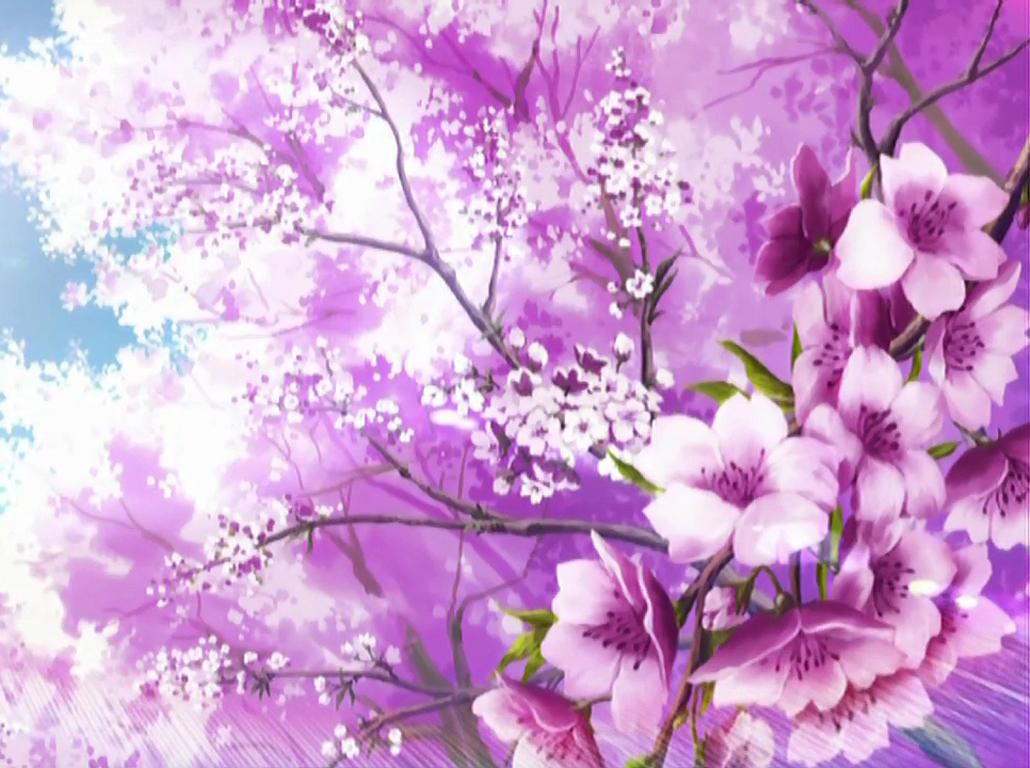 Sakura Blossoms Wallpaper By DragonladysLair