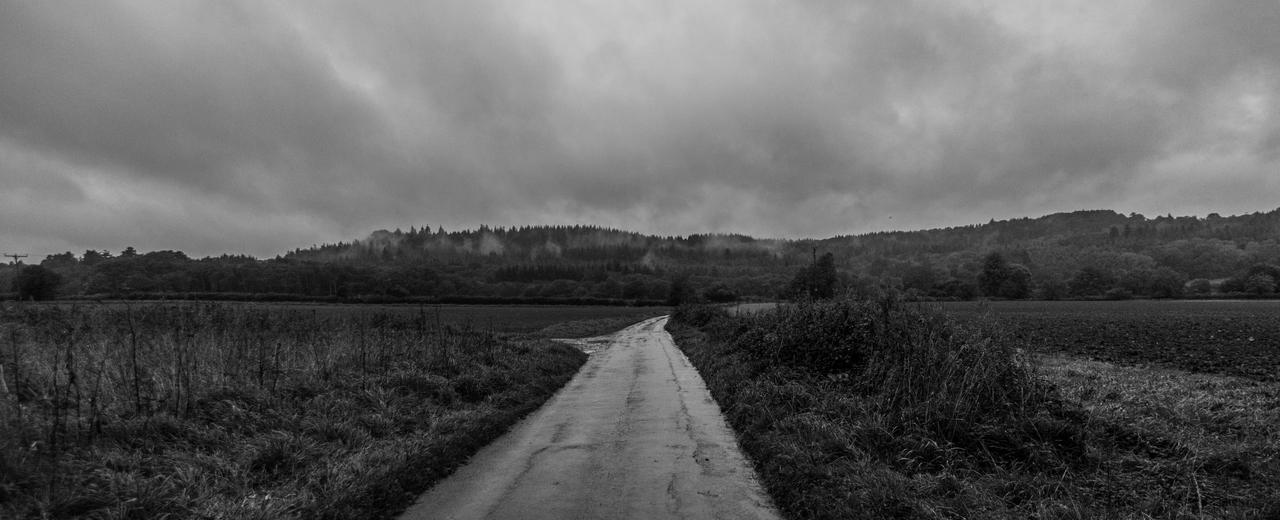 Lonely Road by exosquelette