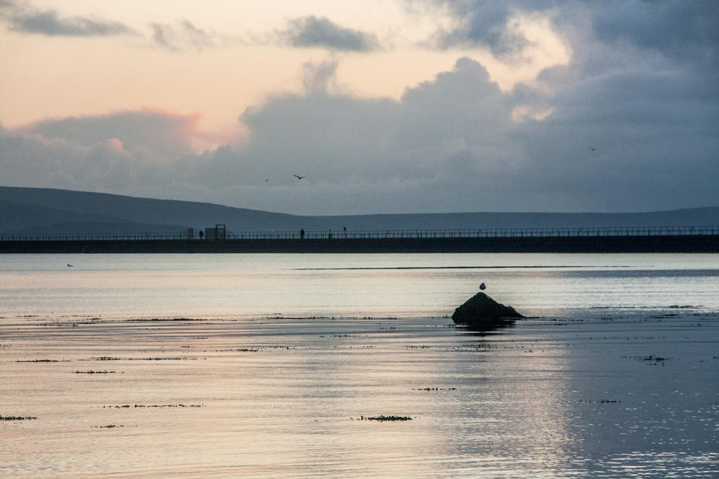 galway 07 by exosquelette