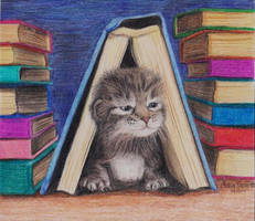 Storybook Kitten by imagineBeyondReality