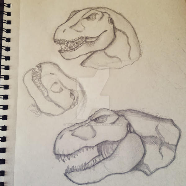 Jurassic Park/World: T-Rex head sketches by Twilightzonegirl13