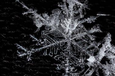 Winter's Crystals by KatharinaKuebler
