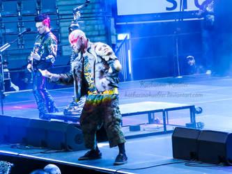 Five Finger Death Punch V