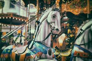 Carousel by shishas