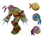 Turtles Test