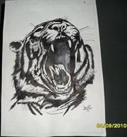 Tiger about to sneeze by Ezequielmercado