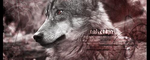 Wolf Signature by BiohazardXxAnime