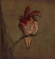 Covo Bird