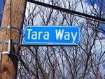 Ebondy Dark'ness Dementia TARA Way