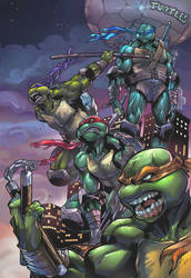 Night of the Ninja Turtles
