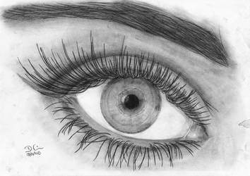 Eye by daniart-de