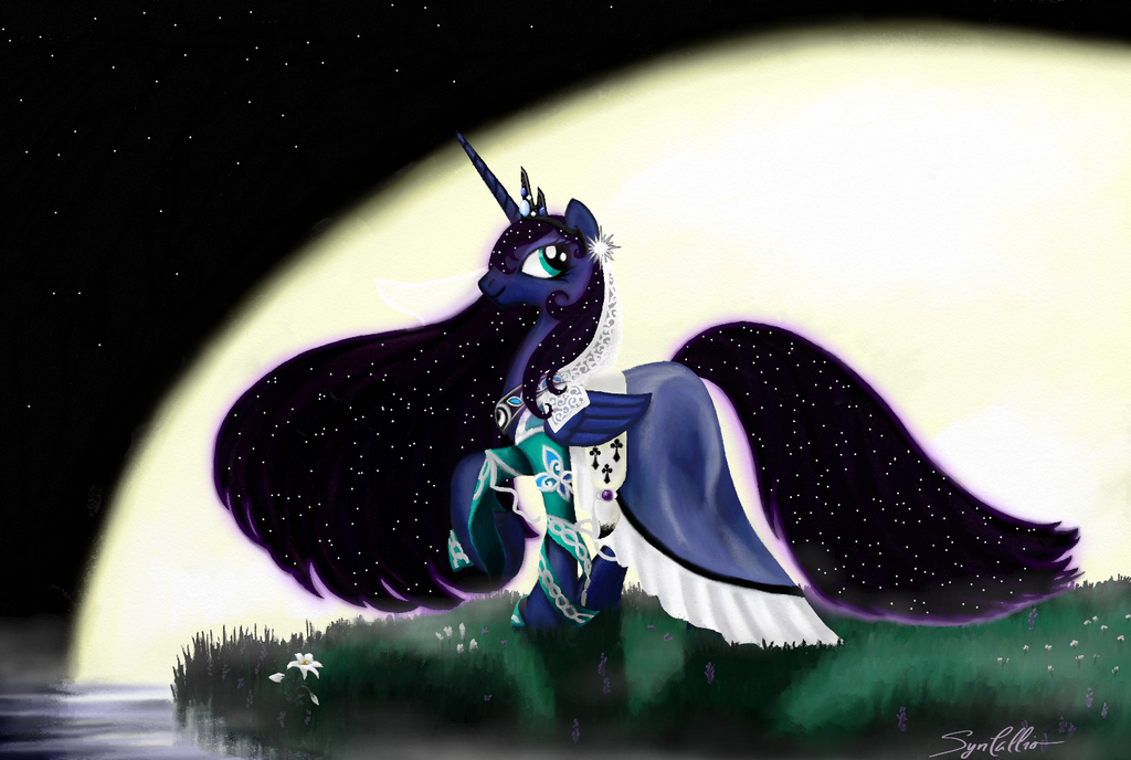 Princess of the Night by SynCallio