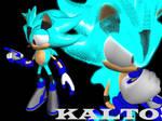 Chaos Hedgehog - Kalto