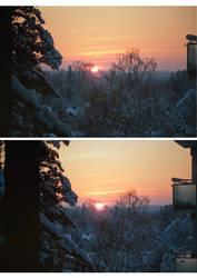 Views from my window 2