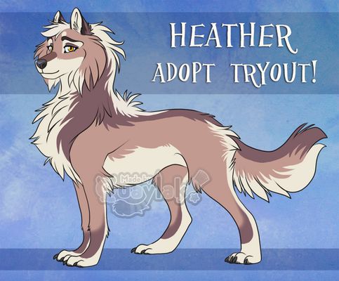 DotW: Heather Adopt Tryout [CLOSED]
