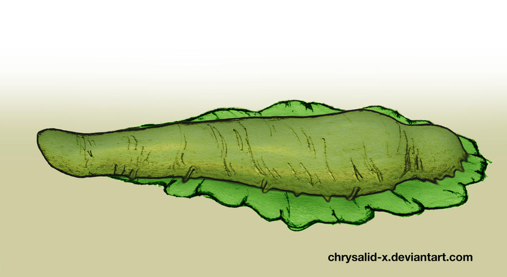 Slime-Tentacles 5 by chrysalid-x on DeviantArt