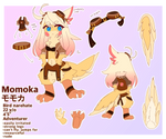 Momoka reference sheet December 2018