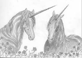 unicorns by tricera