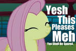 You Have Pleased Fluttershy