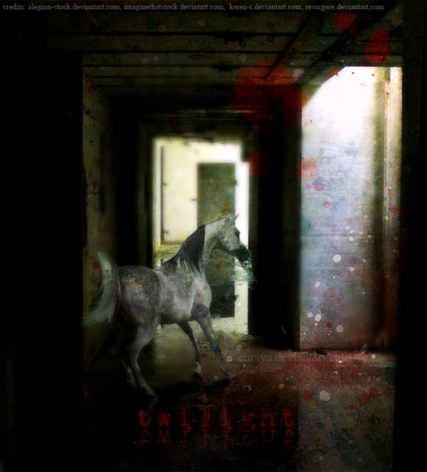 Twilight by Enraya