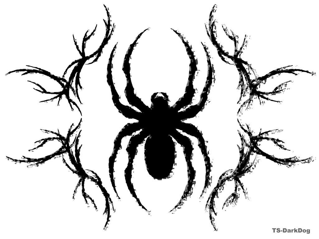 the spider by Ts-DarkDog