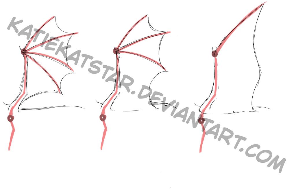 Dragon wing anatomy/tutorial by KatieKatStar on DeviantArt
