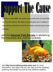Carnival Fish Society Flyer 1