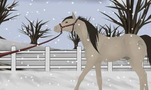 Prince Christmas Halter