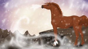 Storm Hunter - Nordanner Winter Auction Bid