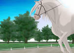 Flying Phantom - Ghost SGQ Dressage