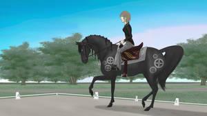 Knight Western Dressage