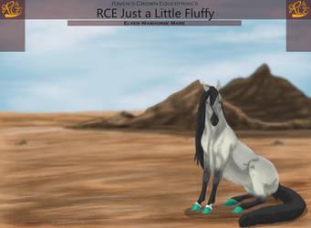 M040 RCE Just a Little Fluffy