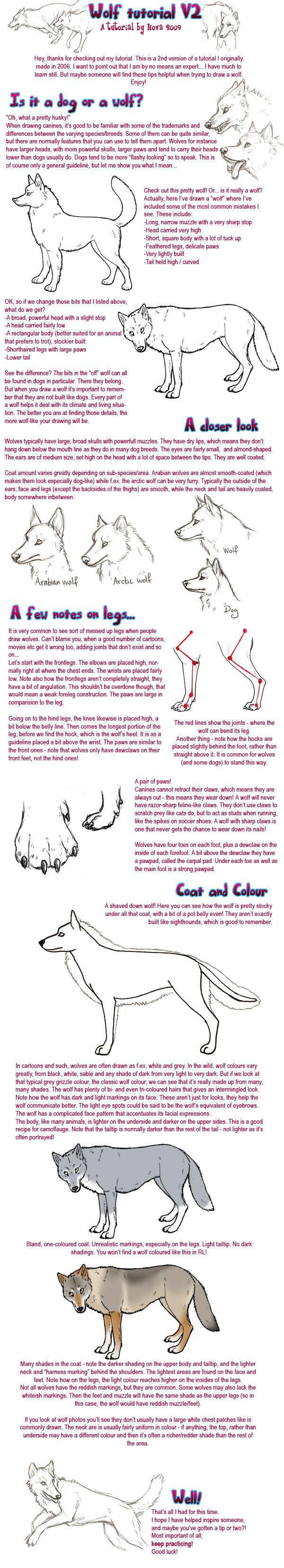 Wolf tutorial, take 2 by novablue