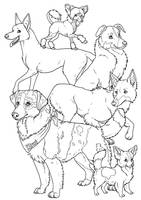 Kiwi and friends colouring page