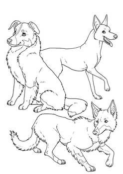 Herders colouring page