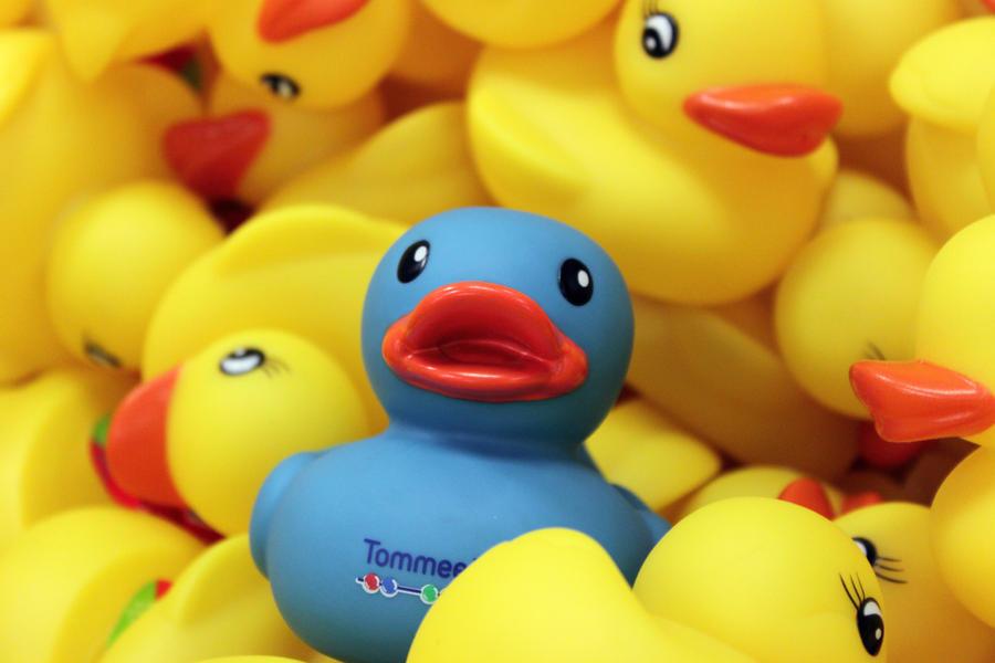 odd_duck_out_by_ice_diamond-d3dmowu.jpg