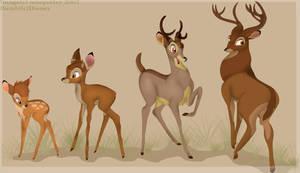A deer's development
