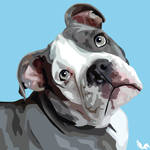 Pet Pawtrait: Buddy the Old English Bulldog by Chasers-Designs