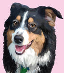 Pet Pawtrait Suzy by Chasers-Designs