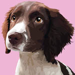 Pet Pawtrait: Darcy by Chasers-Designs