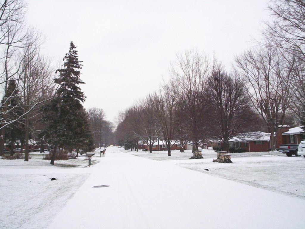 Snowy Neighborhood by Mershell