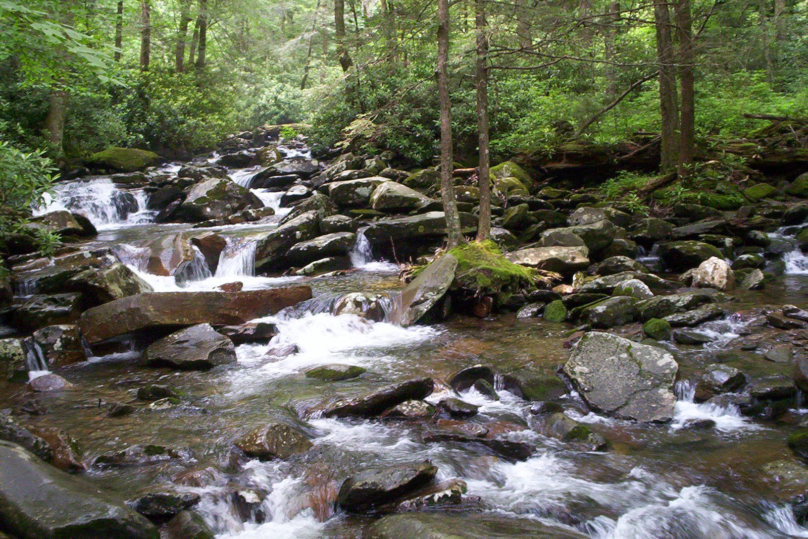 River at Chimney Tops, II by Mershell
