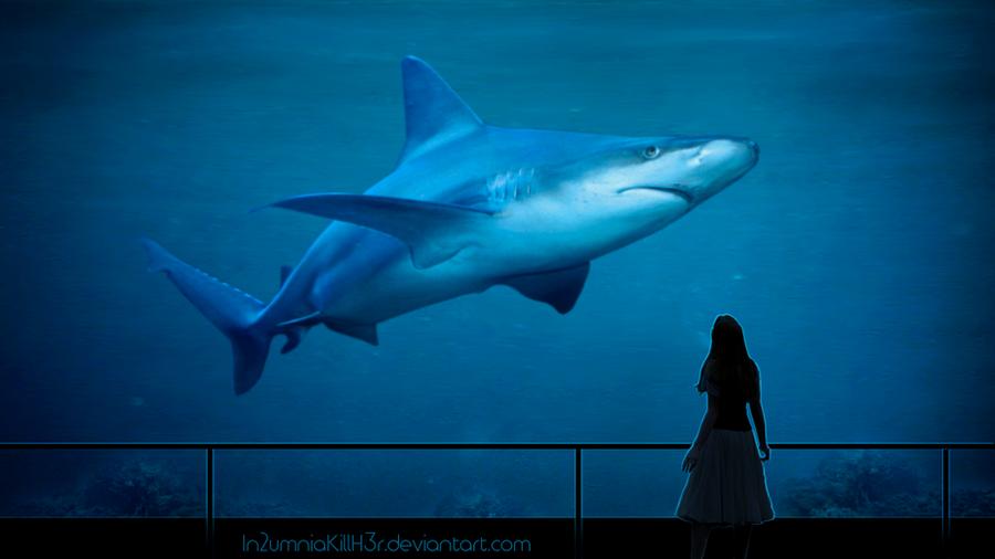 Aquarium by In2umniaKillH3r