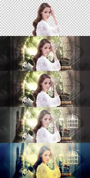 VIDEOTUTORIAL Lana del Rey {Spanish}