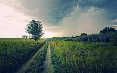 Path Six by AdamSchraderDesign